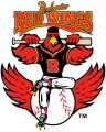 RochesterRedWings.jpg