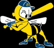 BurlingtonBees.jpg